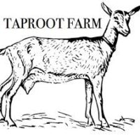 Taproot Farms Soap
